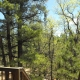35 2277 Back Deck view 2