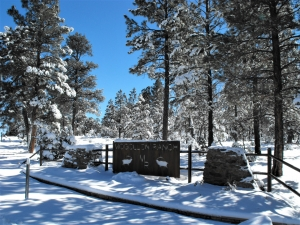 Mogollon Ranch Real Estate
